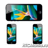 Экран iPhone 5S