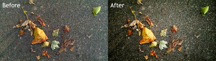 Результат обработки фотографии в программе Snapseed